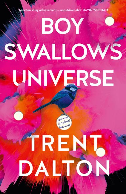 boy-swallows-universe[1]